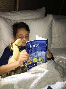 Middle grade fantasy FORTE series